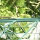 Serre de jardin en verre trempé ALOE DIANA 13,20 m² - Aluminium laqué vert