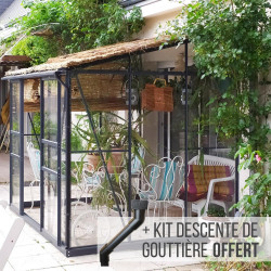 Serre de jardin en verre trempé MELISSA IDA adossée 5,20 m² - Aluminium laqué anthracite