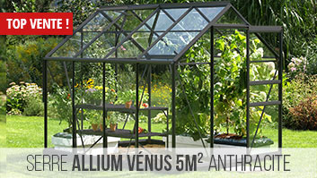 Serre en verre 5m² équivalent serre vénus 5000